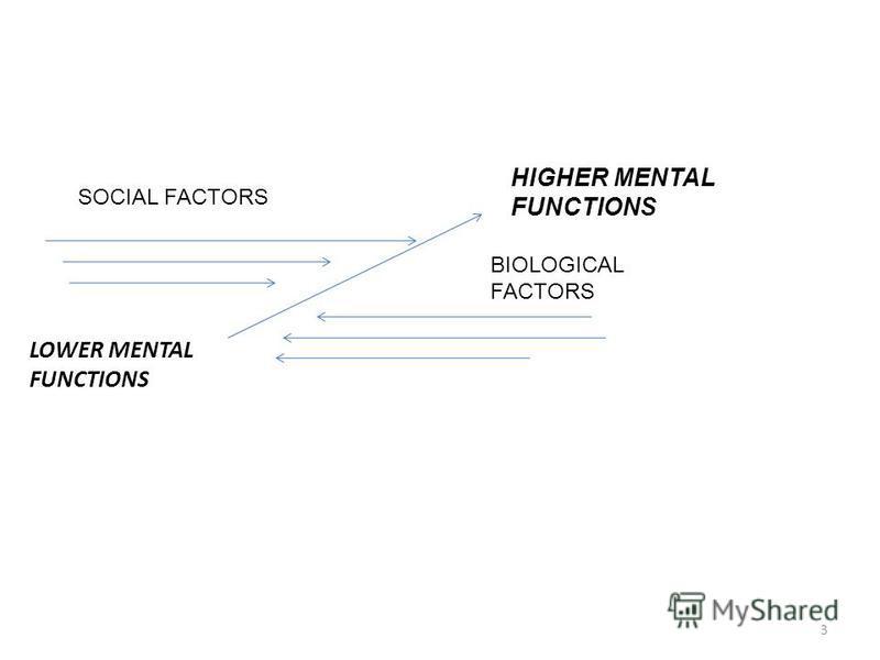 LOWER MENTAL FUNCTIONS HIGHER MENTAL FUNCTIONS SOCIAL FACTORS BIOLOGICAL FACTORS 3