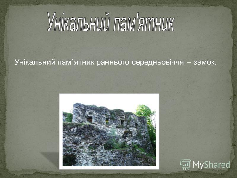 Унікальний пам`ятник раннього середньовіччя – замок.