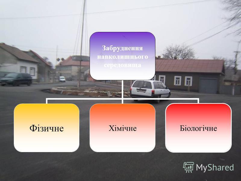 Забруднення навколишньог о середовища ФізичнеХімічнеБіологічне