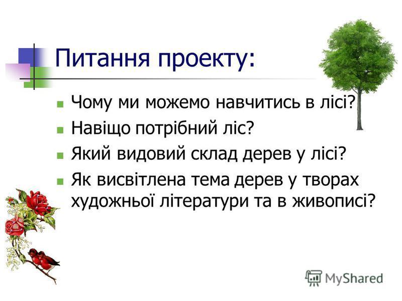 Питання проекту: Чому ми можемо навчитись в лісі? Навіщо потрібний ліс? Який видовий склад дерев у лісі? Як висвітлена тема дерев у творах художньої літератури та в живописі?