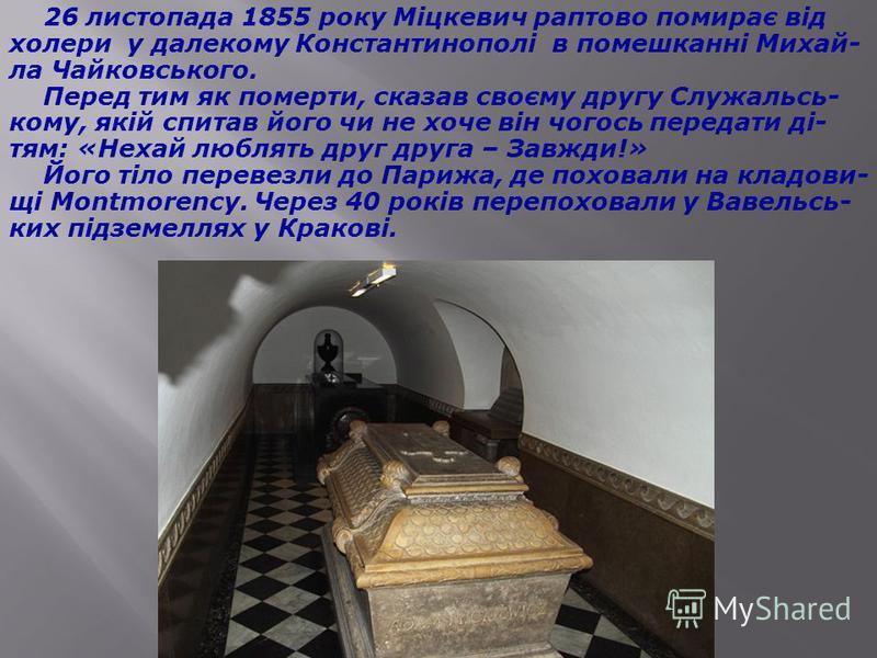 5 березня 1855 року померла дружина Міцкевича, за- лишивши сиротами трьох дітей. Овдовілий поет одержав у вересні те призначення, про яке клопотав. Міцкевич виїхав морем з Парижа в Константинополь із метою створення там нового польського, а також євр