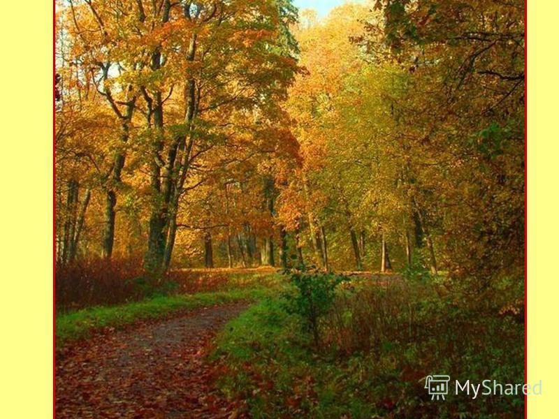 http://content.foto.mail.ru/inbox/g34442007/_myphoto/ig