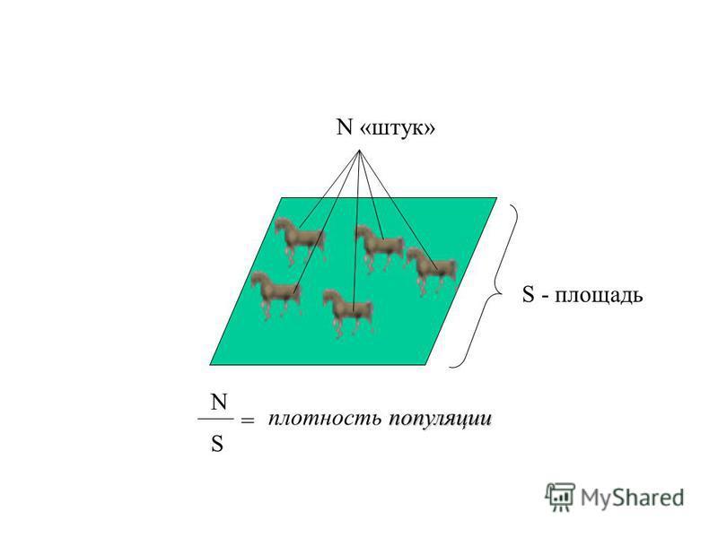 популяции Поскольку подсчитать всех особей данной популяции, как правило, невозможно, то для оценки численности в экологии принято оперировать понятием плотность популяции - числом особей, приходящихся на единицу площади или объема.