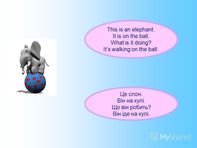 This is an elephant. It is on the ball. What is it doing? Its walking on the ball. Це слон. Він на кулі. Що він робить? Він іде на кулі.