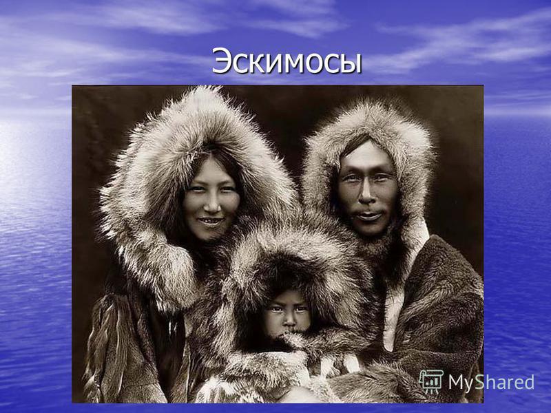 Эскимосы Эскимосы