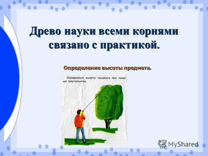 Древо науки всеми корнями связано с практикой. Определение высоты предмета.
