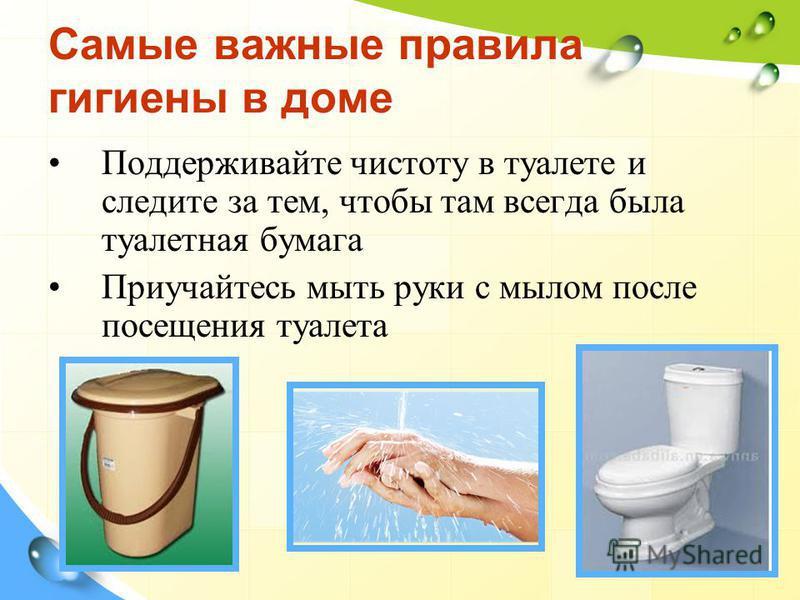 Самые важные правила гигиены в доме Поддерживайте чистоту в туалете и следите за тем, чтобы там всегда была туалетная бумага Приучайтесь мыть руки с мылом после посещения туалета