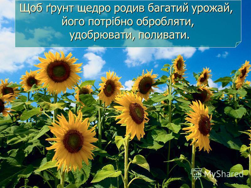 Щоб ґрунт щедро родив багатий урожай, його потрібно обробляти, удобрювати, поливати.