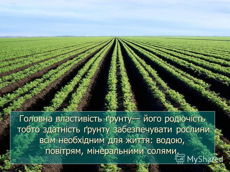 Головна властивість ґрунту його родючість тобто здатність ґрунту забезпечувати рослини всім необхідним для життя: водою, повітрям, мінеральними солями.