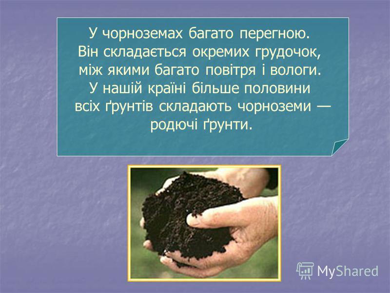 У чорноземах багато перегною. Він складається окремих грудочок, між якими багато повітря і вологи. У нашій країні більше половини всіх ґрунтів складають чорноземи родючі ґрунти.