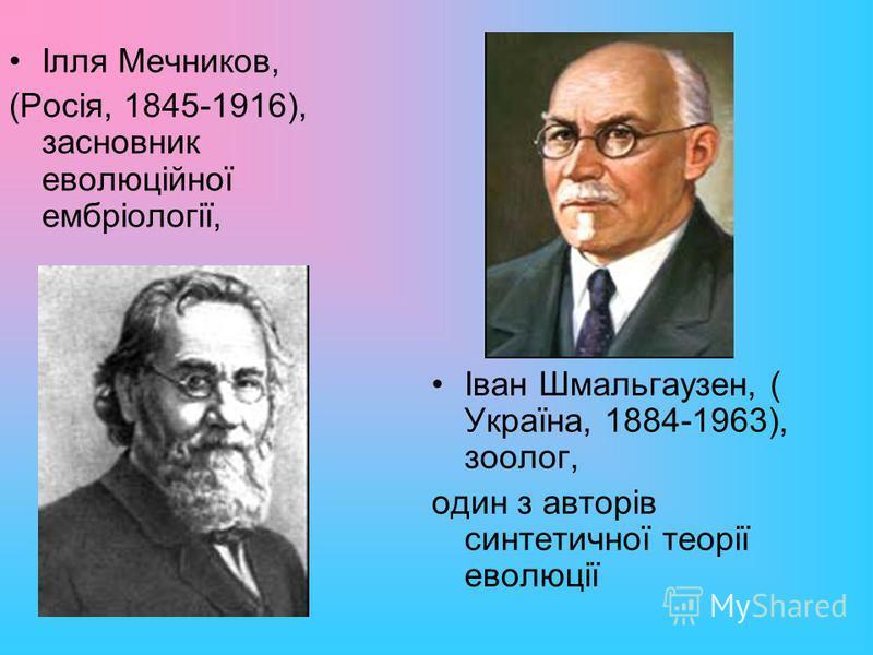 Ілля Мечников, (Росія, 1845-1916), засновник еволюційної ембріології, Іван Шмальгаузен, ( Україна, 1884-1963), зоолог, один з авторів синтетичної теорії еволюції