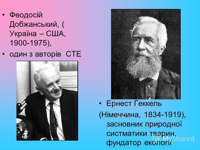 Феодосій Добжанський, ( Україна – США, 1900-1975), один з авторів СТЕ Ернест Геккель (Німеччина, 1834-1919), засновник природної систматики тварин, фундатор екології