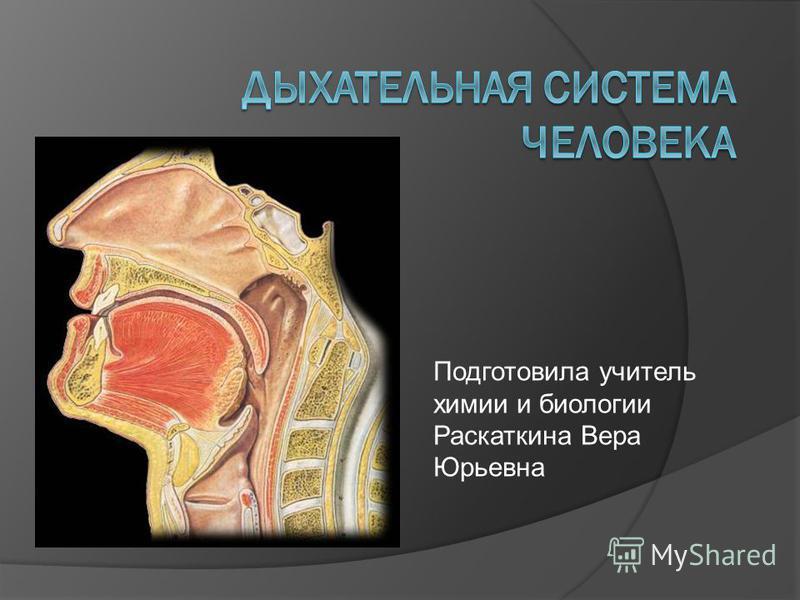 Подготовила учитель химии и биологии Раскаткина Вера Юрьевна