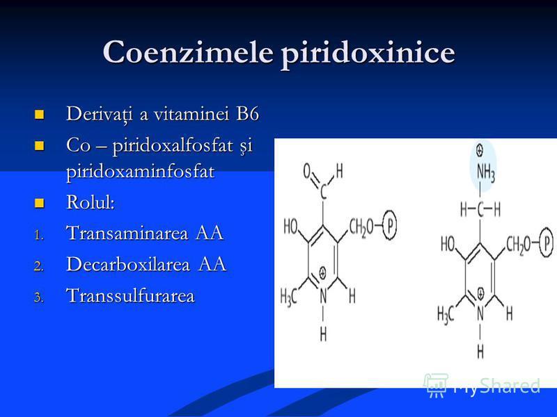 Coenzimele piridoxinice Derivaţi a vitaminei B6 Derivaţi a vitaminei B6 Co – piridoxalfosfat şi piridoxaminfosfat Co – piridoxalfosfat şi piridoxaminfosfat Rolul: Rolul: 1. Transaminarea AA 2. Decarboxilarea AA 3. Transsulfurarea