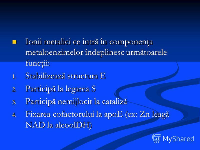 Ionii metalici ce intră în componenţa metaloenzimelor îndeplinesc următoarele funcţii: Ionii metalici ce intră în componenţa metaloenzimelor îndeplinesc următoarele funcţii: 1. Stabilizează structura E 2. Participă la legarea S 3. Participă nemijloci
