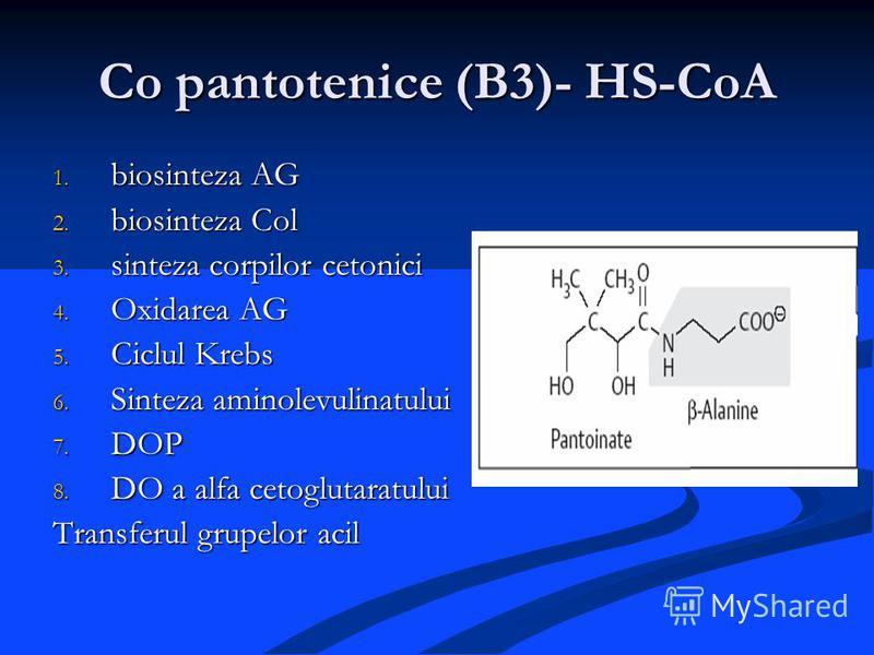 Co pantotenice (B3)- HS-CoA 1. biosinteza AG 2. biosinteza Col 3. sinteza corpilor cetonici 4. Oxidarea AG 5. Ciclul Krebs 6. Sinteza aminolevulinatului 7. DOP 8. DO a alfa cetoglutaratului Transferul grupelor acil