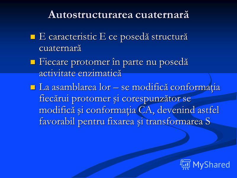 Autostructurarea cuaternară E caracteristic E ce posedă structură cuaternară E caracteristic E ce posedă structură cuaternară Fiecare protomer în parte nu posedă activitate enzimatică Fiecare protomer în parte nu posedă activitate enzimatică La asamb