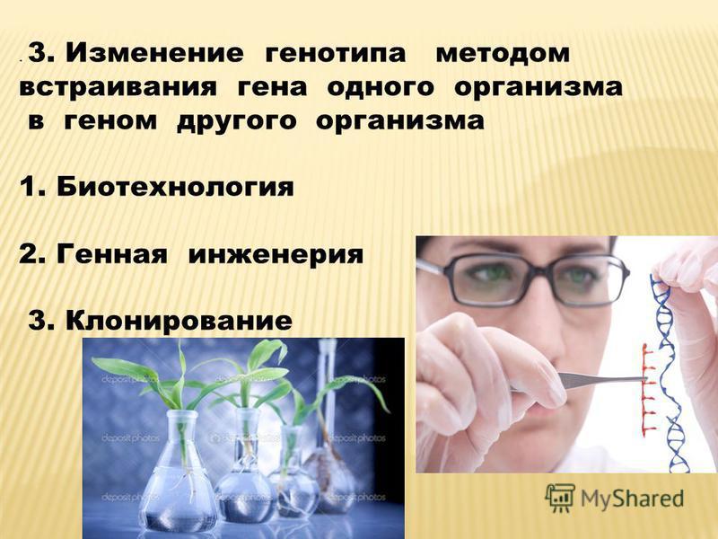 . 3. Изменение генотипа методом встраивания гена одного организма в геном другого организма 1. Биотехнология 2. Генная инженерия 3. Клонирование