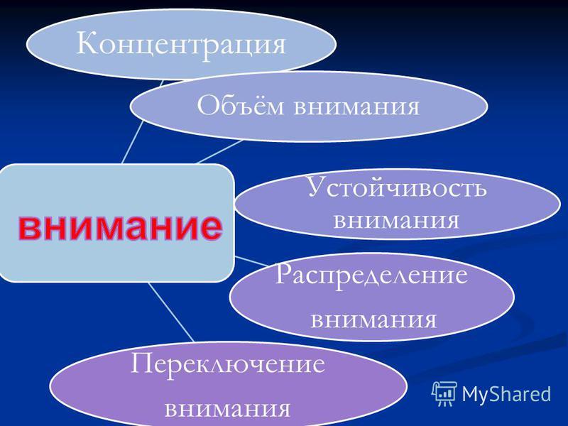 Концентрация Объём внимания Устойчивость внимания Распределение внимания Переключение внимания
