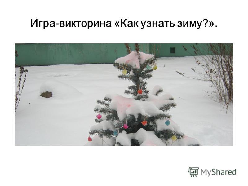 Игра-викторина «Как узнать зиму?».
