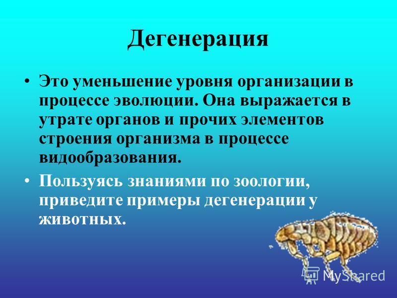 Дегенерация Это уменьшение уровня организации в процессе эволюции. Она выражается в утрате органов и прочих элементов строения организма в процессе видообразования. Пользуясь знаниями по зоологии, приведите примеры дегенерации у животных.
