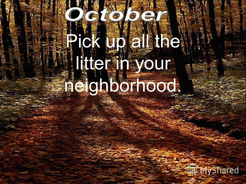 Pick up all the litter in your neighborhood.