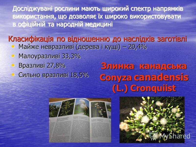 Досліджувані рослини мають широкий спектр напрямків використання, що дозволяє їх широко використовувати в офіційній та народній медицині Класифікація по відношенню до наслідків заготівлі Майже невразливі (дерева і кущі) – 20,4% Малоуразливі 33,3% Вра