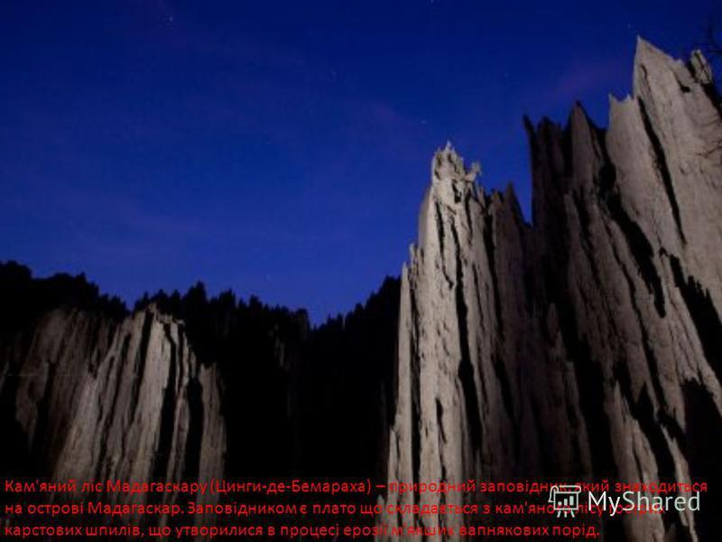 Кам'яний ліс Мадагаскару (Цинги-де-Бемараха) – природний заповідник, який знаходиться на острові Мадагаскар. Заповідником є плато що складається з кам'яного лісу гострих карстових шпилів, що утворилися в процесі ерозії м'якших вапнякових порід.