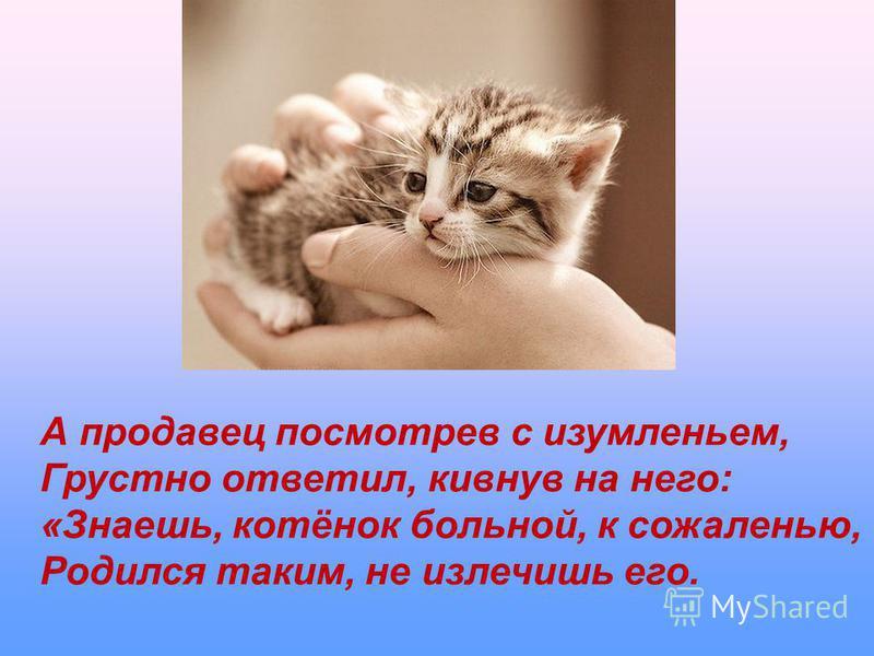 А продавец посмотрев с изумленьем, Грустно ответил, кивнув на него: «Знаешь, котёнок больной, к сожаленью, Родился таким, не излечишь его.