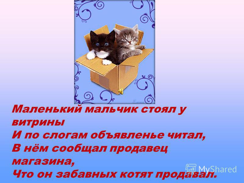 Маленький мальчик стоял у витрины И по слогам объявленье читал, В нём сообщал продавец магазина, Что он забавных котят продавал.