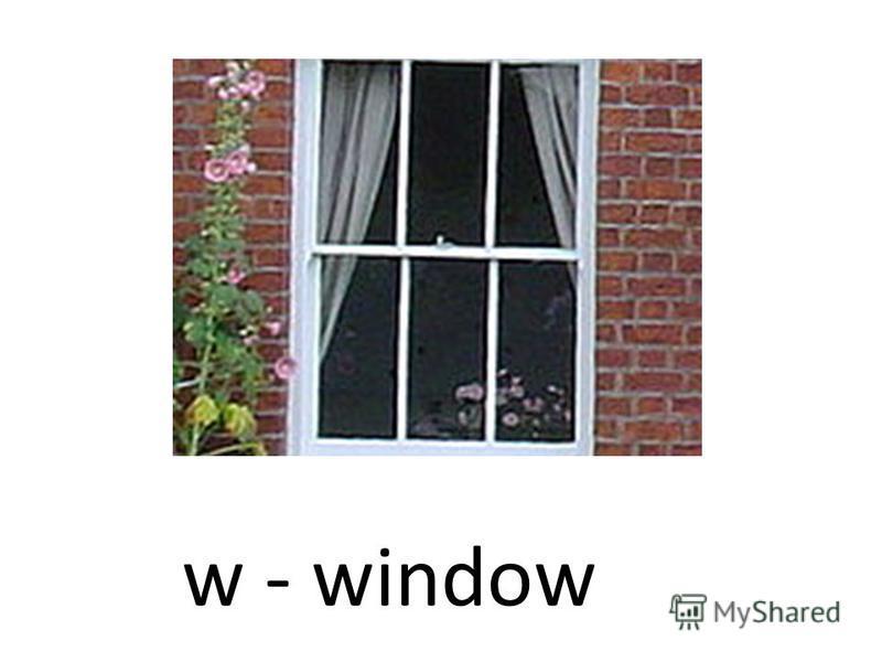 w - window