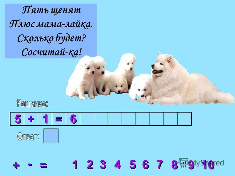 Пять щенят Плюс мама-лайка. Сколько будет? Сосчитай-ка! 2 2 3 3 4 4 5 5 6 6 7 7 8 8 1 1 9 9 10 + + = = - - 5 5 + + 1 1 = = 6 6