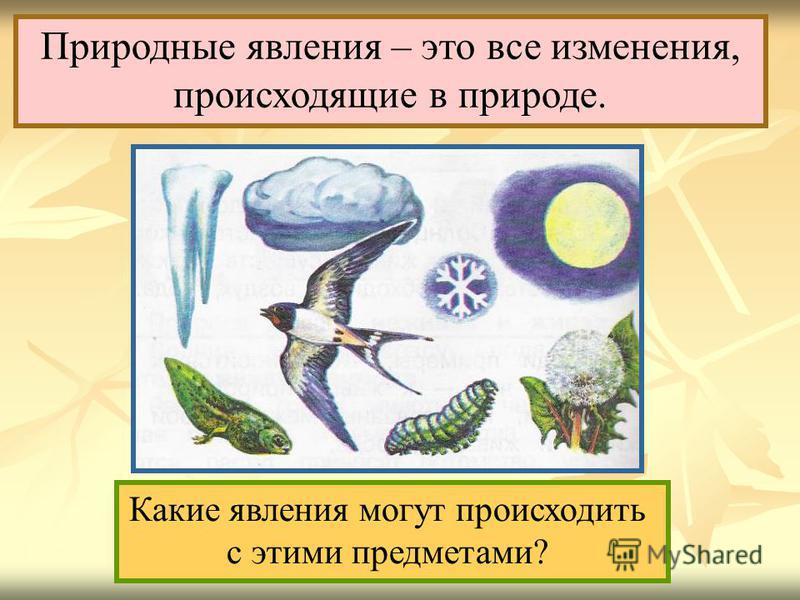 Природные явления – это все изменения, происходящие в природе. Какие явления могут происходить с этими предметами?