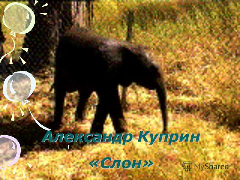 Александр Куприн «Слон»