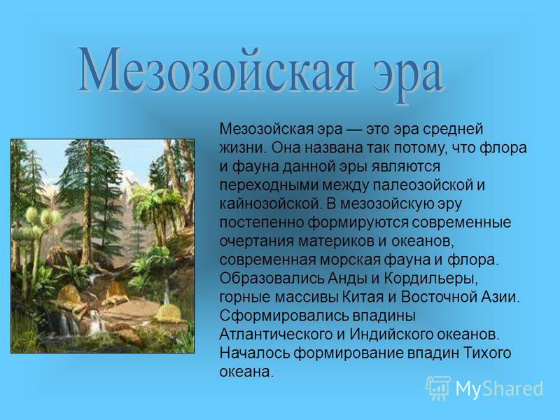 Мезозойская эра это эра средней жизни. Она названа так потому, что флора и фауна данной эры являются переходными между палеозойской и кайнозойской. В мезозойскую эру постепенно формируются современные очертания материков и океанов, современная морска