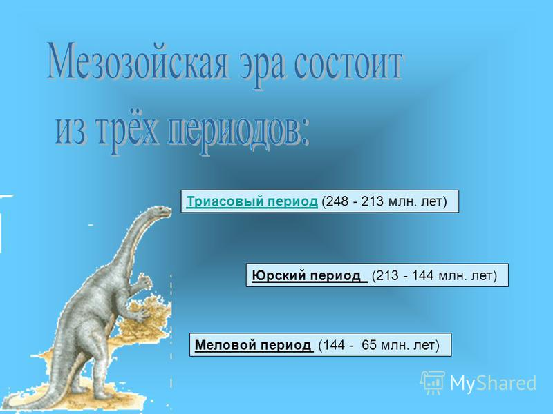 Триасовый период Триасовый период (248 - 213 млн. лет) Юрский период (213 - 144 млн. лет) Меловой период (144 - 65 млн. лет)
