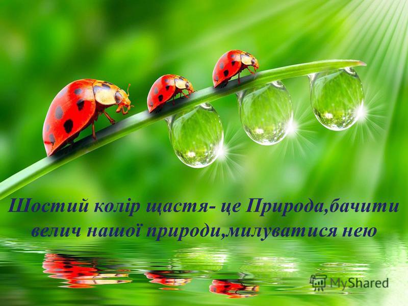 Шостий колір щастя- це Природа,бачити велич нашої природи,милуватися нею