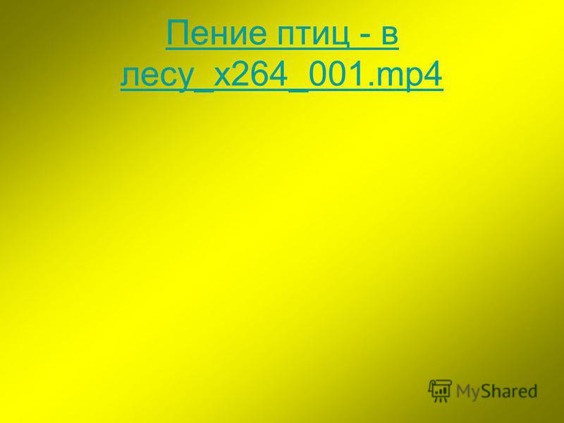 Пение птиц - в лесу_x264_001.mp4