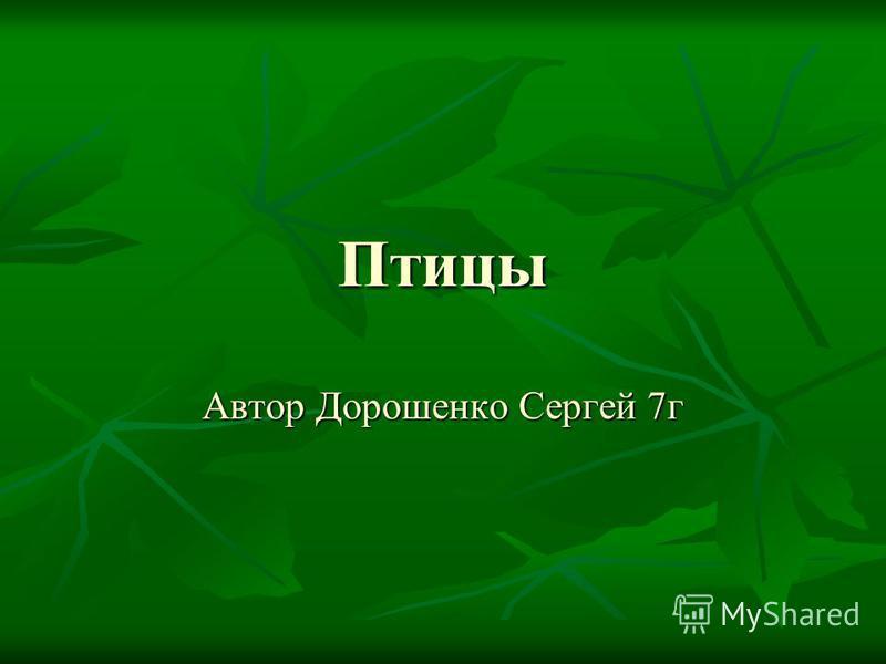 Автор Дорошенко Сергей 7 г Птицы