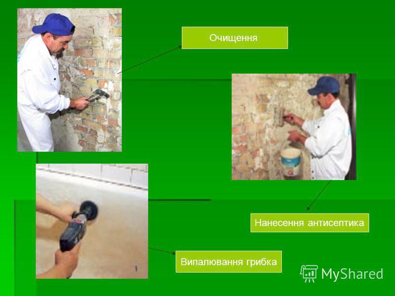 Очищення Нанесення антисептика Випалювання грибка