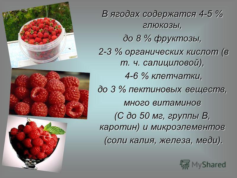 В ягодах содержатся 4-5 % глюкозы, до 8 % фруктозы, 2-3 % органических кислот (в т. ч. салициловой), 2-3 % органических кислот (в т. ч. салициловой), 4-6 % клетчатки, 4-6 % клетчатки, до 3 % пектиновых веществ, много витаминов (C до 50 мг, группы B,