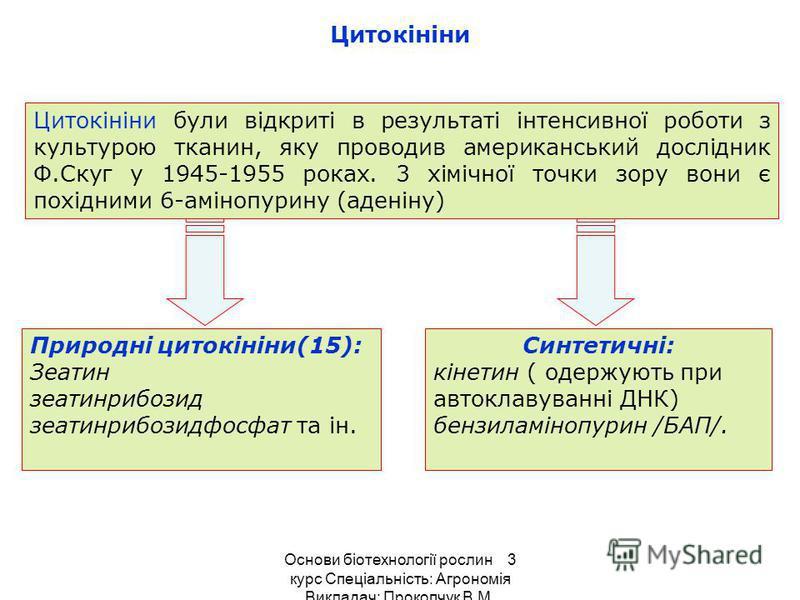 Цитокініни Цитокініни були відкриті в результаті інтенсивної роботи з культурою тканин, яку проводив американський дослідник Ф.Скуг у 1945-1955 роках. 3 хімічної точки зору вони є похідними 6-амінопурину (аденіну) Природні цитокініни(15): Зеатин зеа