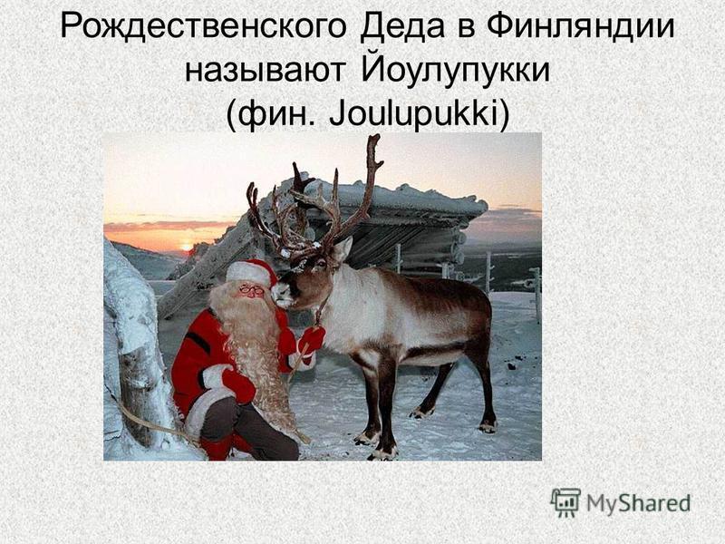Рождественского Деда в Финляндии называют Йоулупукки (фин. Joulupukki)