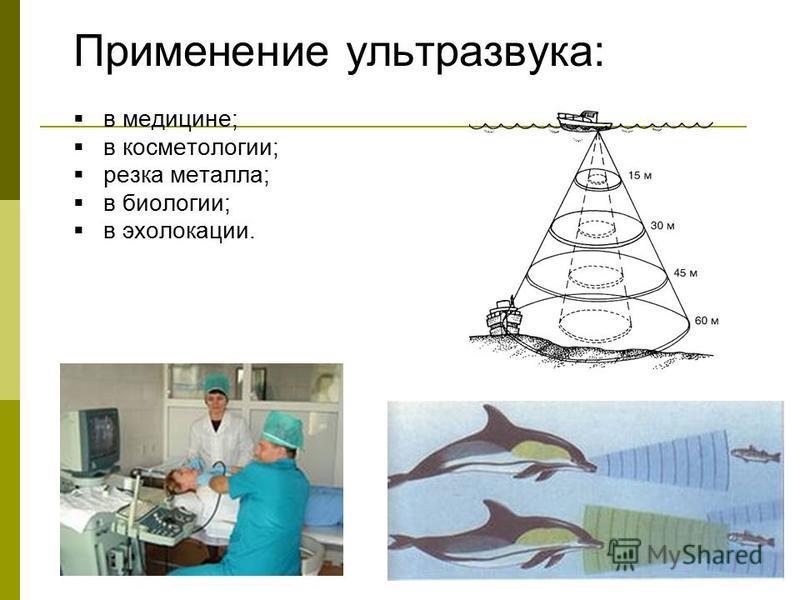 Применение ультразвука: в медицине; в косметологии; резка металла; в биологии; в эхолокации.