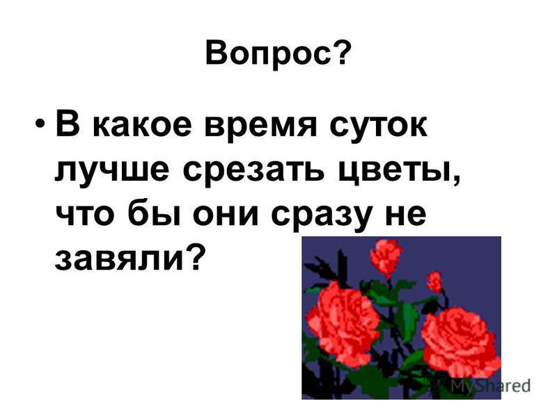 Вопрос? В какое время суток лучше срезать цветы, что бы они сразу не завяли?