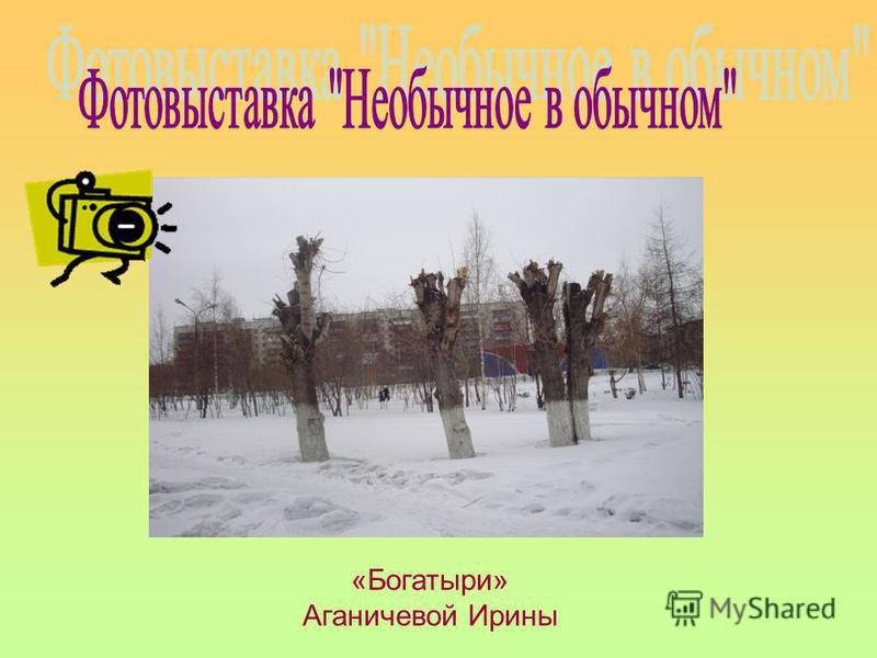 «Богатыри» Аганичевой Ирины
