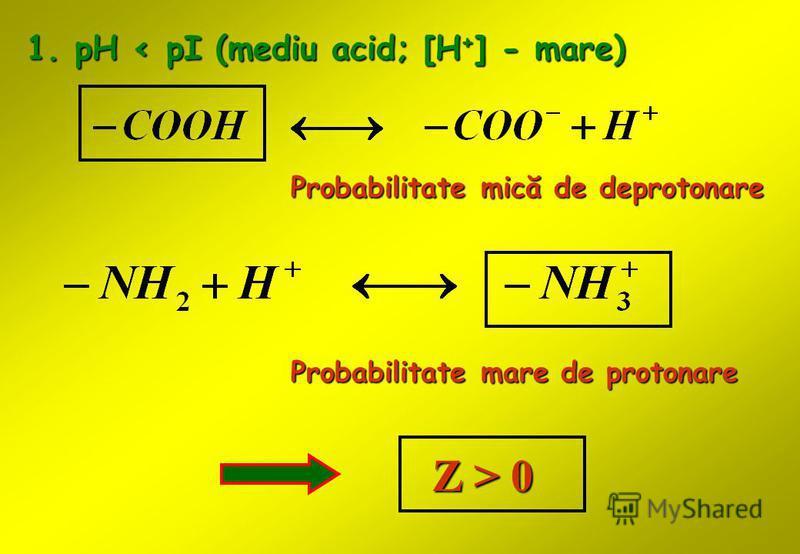 1. pH < pI (mediu acid; [H + ] - mare) Probabilitate mică de deprotonare Probabilitate mare de protonare Z > 0