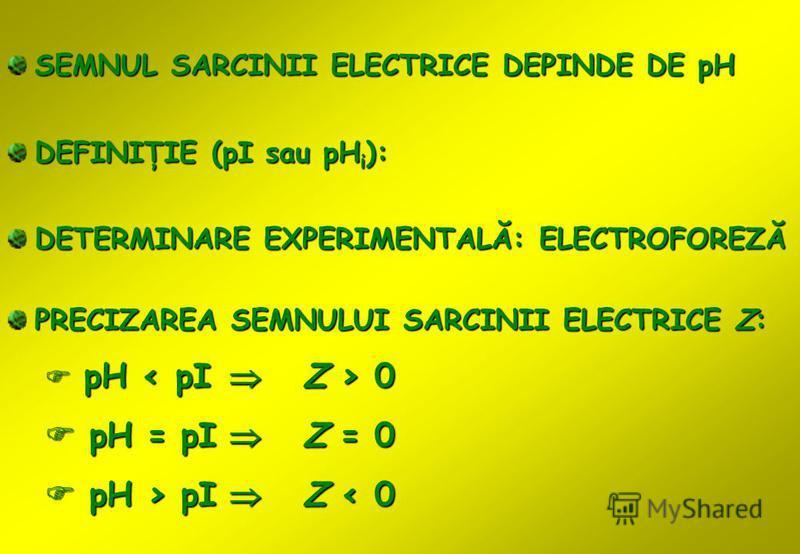 DEFINIŢIE (pI sau pH i ): PRECIZAREA SEMNULUI SARCINII ELECTRICE Z: pH 0 pH 0 pH = pI Z = 0 pH = pI Z = 0 pH > pI Z pI Z < 0 SEMNUL SARCINII ELECTRICE DEPINDE DE pH DETERMINARE EXPERIMENTALĂ: ELECTROFOREZĂ