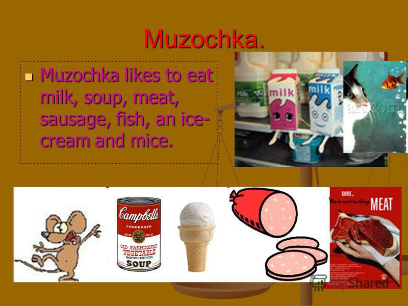 Muzochka. Muzochka likes to eat milk, soup, meat, sausage, fish, an ice- cream and mice. Muzochka likes to eat milk, soup, meat, sausage, fish, an ice- cream and mice.
