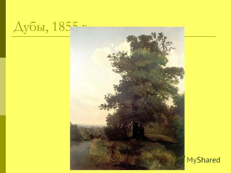 Дубы, 1855 г.
